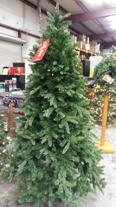 Christmas Tree 7 5 Sierra Nevada Fir With 8 Function