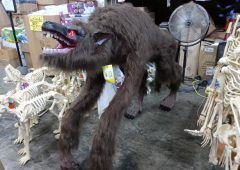 Halloween 63 in. Animated Crouching Fur Werewolf with LED Eyes